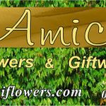 Amici  Flowers & Giftware profile image.
