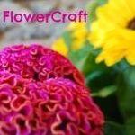 FlowerCraft profile image.