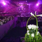 Dreamark Events profile image.