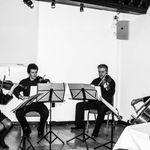 Auralio String Quartet profile image.