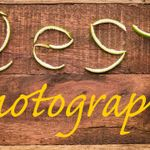 Zest Photography  profile image.