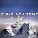 Eagle K-9 Academy LLC profile image.