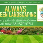 Always Green Landscaping profile image.