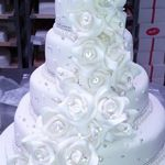 Celebration Cakes & Healys Bakery profile image.
