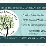 Creative Landscapes & Tree Care profile image.