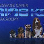 Seirios K9 Academy profile image.