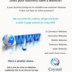 Crystal Business Consultants profile image.