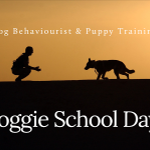 Doggie School Days profile image.