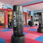 Spartan Kickboxing & Fitness profile image.