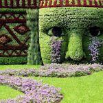 Lisa McKnight Landscape & Garden Designer profile image.