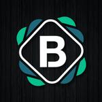 BrandedResumes profile image.