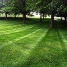 Whispering Hills Lawn Service, LLC