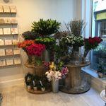 Gardenia of London profile image.