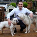 Angel Dog Training profile image.