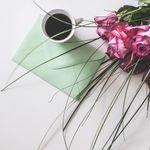 Sage Lily Celebration Stationery profile image.