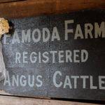 Famoda Farm profile image.