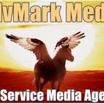 AdvMark Media LLC profile image.