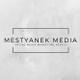 Dylan Mestyanek logo