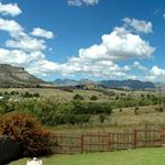 Clarens Bookings profile image.