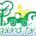 Kingsland Farming PTY LTD - the profesional tree felling legend profile image.