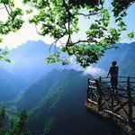 Abundant Life Coaching profile image.