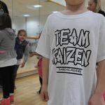 Team Kaizen TDS profile image.