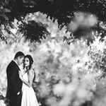 Lavender Hill Country Estate & Wedding venue (PTY) Ltd profile image.