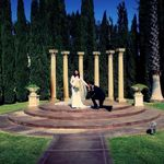 Avant-Garde kinema Studio Wedding Videography profile image.