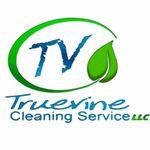 Truevine Cleaning profile image.