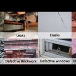 Mould and Damp solutions profile image.