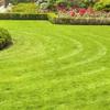 Pauls gardening profile image