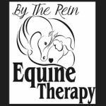 By The Rein Equine Therapy profile image.
