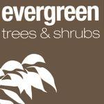 Evergreen Direct profile image.