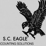S.C Eagle Accounting Solutions profile image.