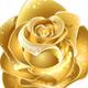 EternalRoseCollection logo
