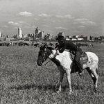 River Ranch-Texas Horse Park profile image.