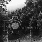B+S Photo and Film profile image.