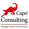 Capri Consulting Ltd profile image