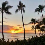 Aloha Beach Weddings of Maui - Wedding Planner profile image.