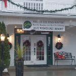 Five Points Pet Resort profile image.
