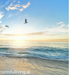 Saoirse Counselling & Therapy Service profile image.