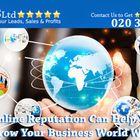 STRATEGIC WEB SUCCESS LTD