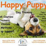 Top Barks Training Academy Ltd profile image.
