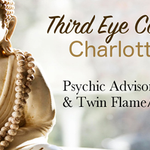 Third Eye Consultant profile image.