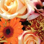 Towne Flowers profile image.