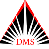 DMS Financial Consulting LLC profile image