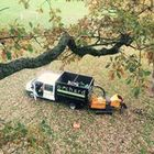 Orchard tree surgery