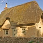 Mulberry Cottages profile image.