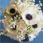 Rhoxan Hayes Flowers & Hire profile image.