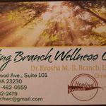 Healing Branch Wellness Center, LLC profile image.